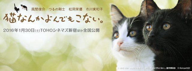 """画像: 30万人が泣いた!感動実話コミックス""""奇跡""""の映像化『猫なんかよんでもこない。』"""