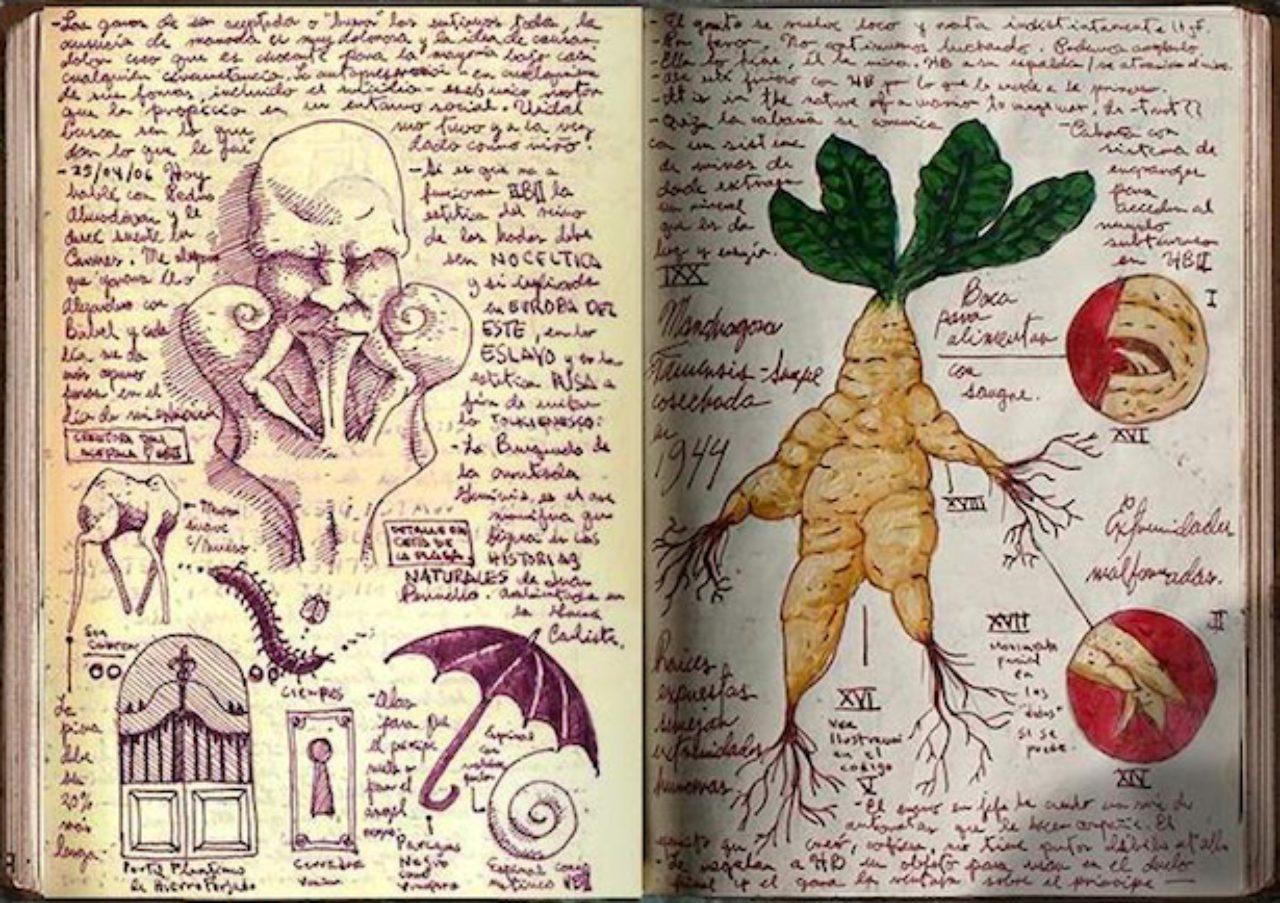 画像7: http://www.film.com/photos/guillermo-del-toros-incredible-sketchbooks