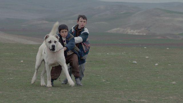 画像6: http://www.hollywoodreporter.com/lists/oscars-guide-inside-81-foreign-839500/item/utopia-81-foreign-films-839501