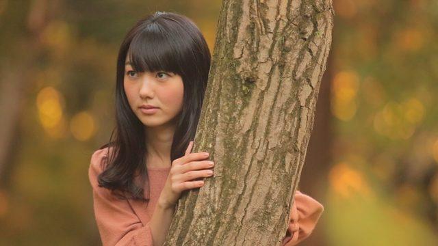 画像3: 北島博士のおもしろ映画講座 第11回 『森のカフェ』と榎本憲男監督