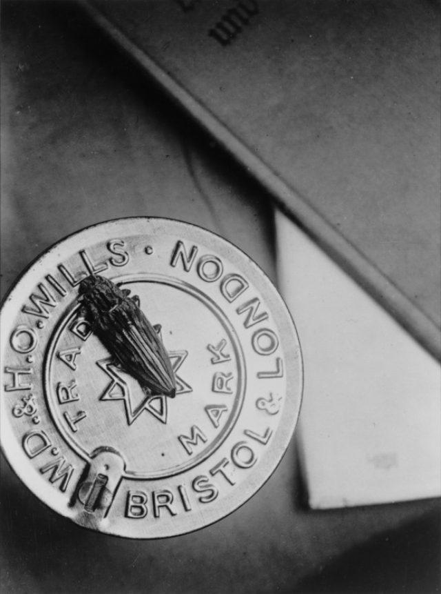 画像: 《オバタマムシ(『博物志』)》1938-42頃、ゼラチン・シルバー・プリント、東京国立近代美術館