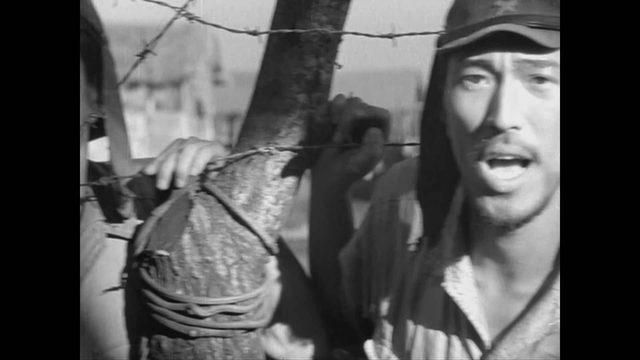画像: The Burmese Harp ビルマの竪琴 (1956) HD trailer youtu.be