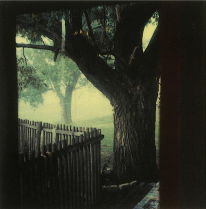 画像5: http://www.anothermag.com/art-photography/2939/andrei-tarkovskys-polaroids