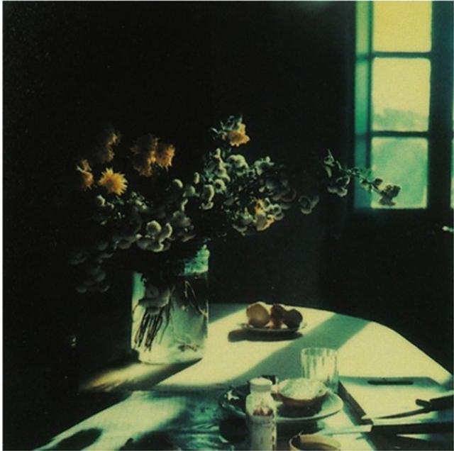 画像1: http://www.anothermag.com/art-photography/2939/andrei-tarkovskys-polaroids