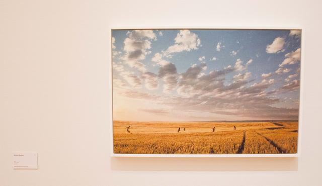 "画像: ""Mellow Meadow"" (2012) from RYAN MCGINLEY BODY LOUD ! / collection of Mr. Yuichi Enomoto"