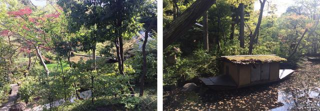画像: 新緑が眩しい根津美術館の庭園 photo©cinefil