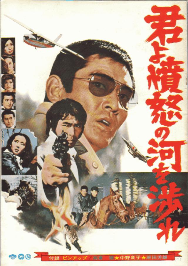 画像: 『君よ憤怒の河を渉れ』 http://kayano55.xsrv.jp/%E6%84%9F%E5%8B%95/956/