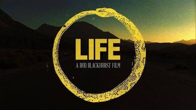 画像1: LIFE vimeo.com