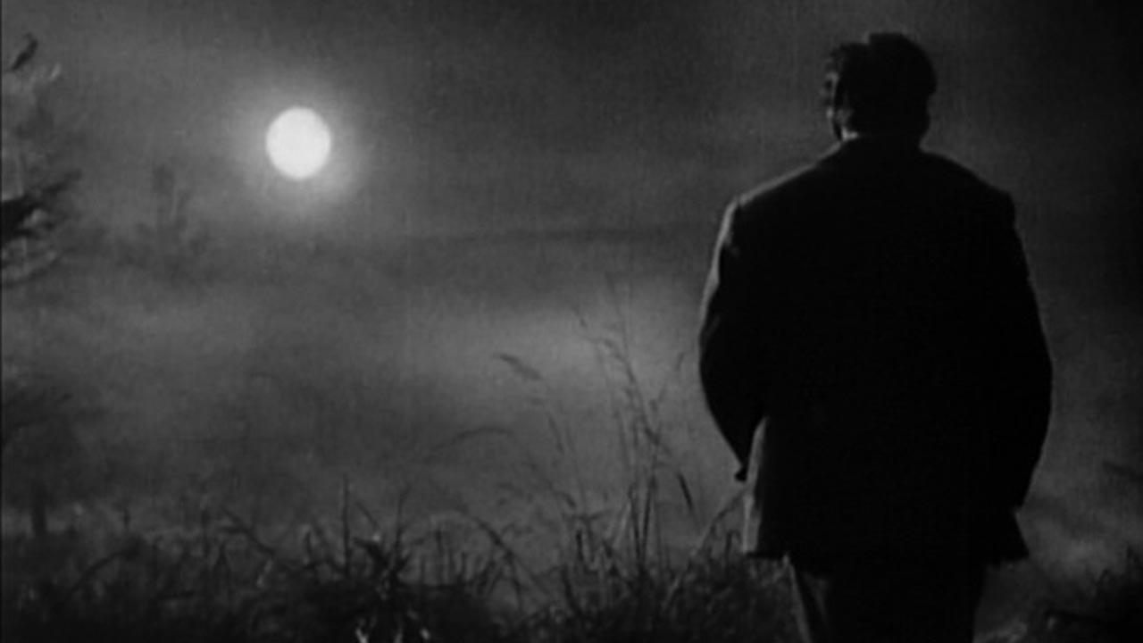 画像: http://filmschoolrejects.com/features/the-movie-that-has-everything-sunrise-a-song-of-two-humans-lpalm.php