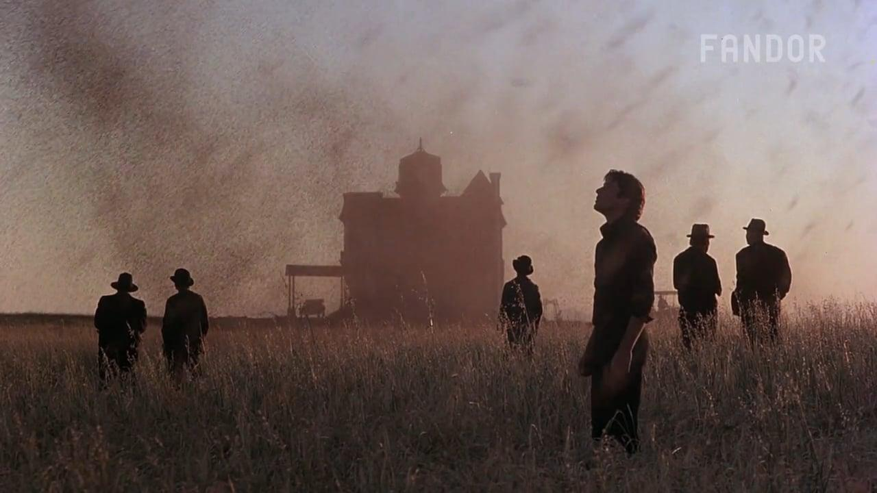画像1: Which Movies Have the Greatest Cinematography? vimeo.com