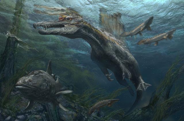 画像: スピノサウルス復元画 ©Davide Bonadonna