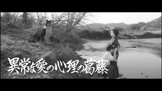 画像: 「愛の渇き」予告編 youtu.be