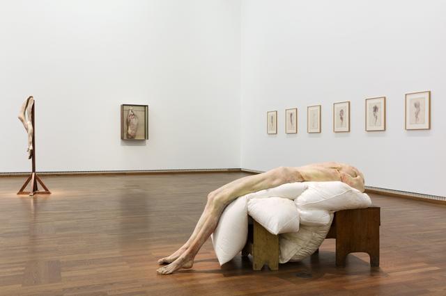 画像: Berlinde De Bruyckere, Suture © © Leopold Museum, Wien