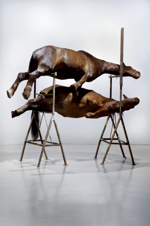 画像: BERLINDE DE BRUYCKERE, Les Deux | 2001 © Sammlung der Künstlerin, Foto: Richard Max Tremblay