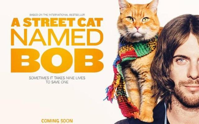 画像: http://www.telegraph.co.uk/films/2016/06/21/a-street-cat-named-bob-watch-luke-treadaway-in-the-first-trailer/