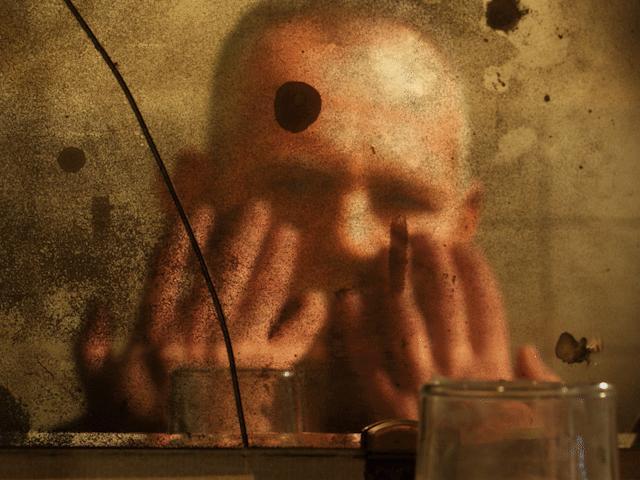 画像2: https://www.indiegogo.com/projects/the-last-film-by-jan-svankmajer-insects--4 #/#japanese