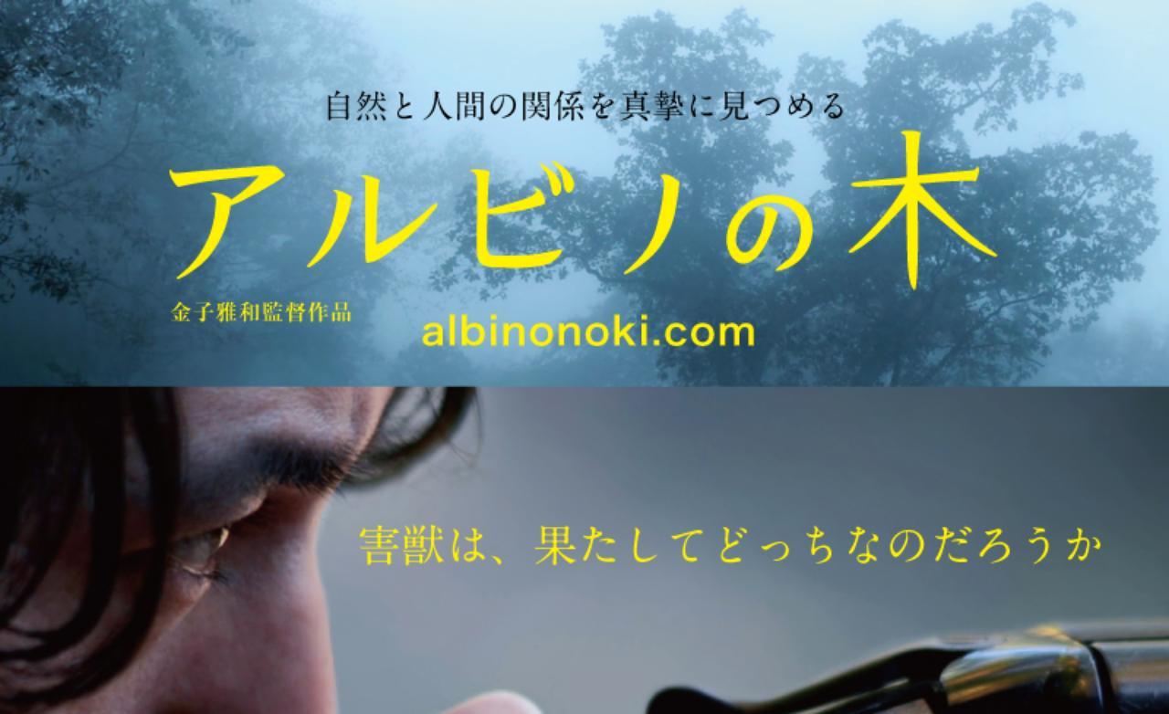 """画像: 映画「アルビノの木」""""-The Albino's Trees-"""" 公式HP -金子雅和監督作品-"""