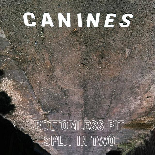 画像: Bottomless Pit | Split In Two, by CANINES