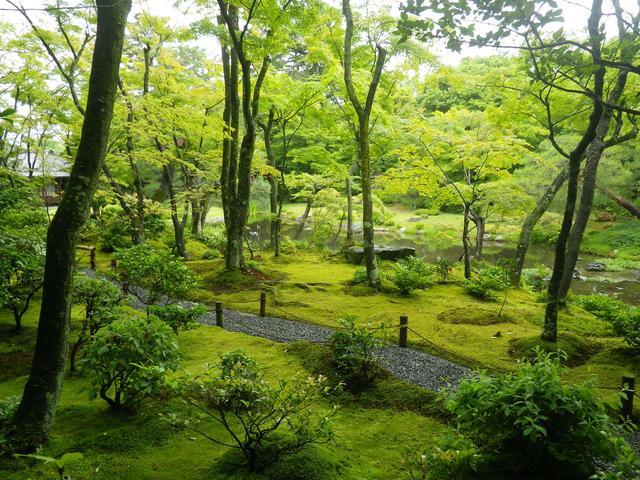 画像3: 庭園