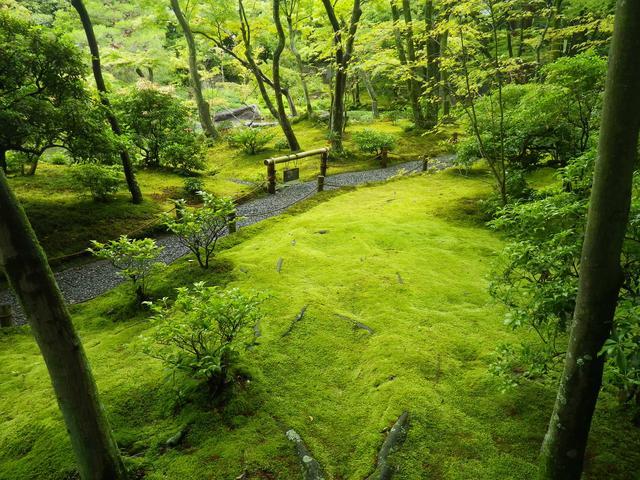 画像4: 庭園