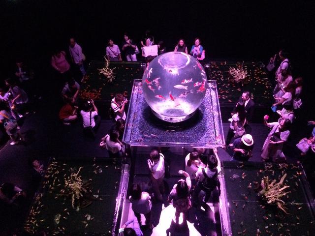 画像4: アートアクアリウム誕生10周年記念祭 「アートアクアリウム展~大阪・金魚の艶~&ナイトアクアリム」