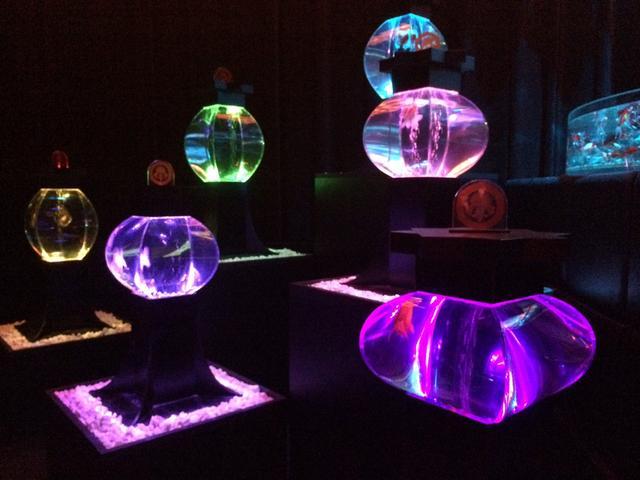 画像2: アートアクアリウム誕生10周年記念祭 「アートアクアリウム展~大阪・金魚の艶~&ナイトアクアリム」