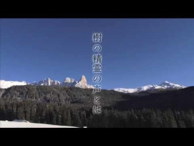 画像: 『地球交響曲第八番』 予告編 youtu.be