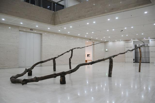 画像: 金成培     Kim Sung Bae (韓国) Haha Pine tree Pine tree 1987