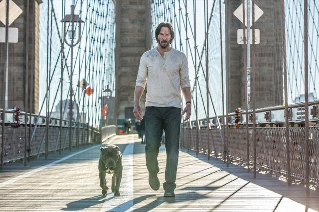 画像2: http://www.comingsoon.net/movies/trailers/774485-the-john-wick-chapter-2-trailer-is-here #/slide/1