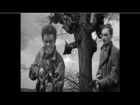 画像: 「灰とダイヤモンド」Popiół i diament(1958波) youtu.be
