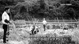画像: 驚天動地!日本映画史に残る奇跡!小川プロ全作品DVD化プロジェクト始動! youtu.be