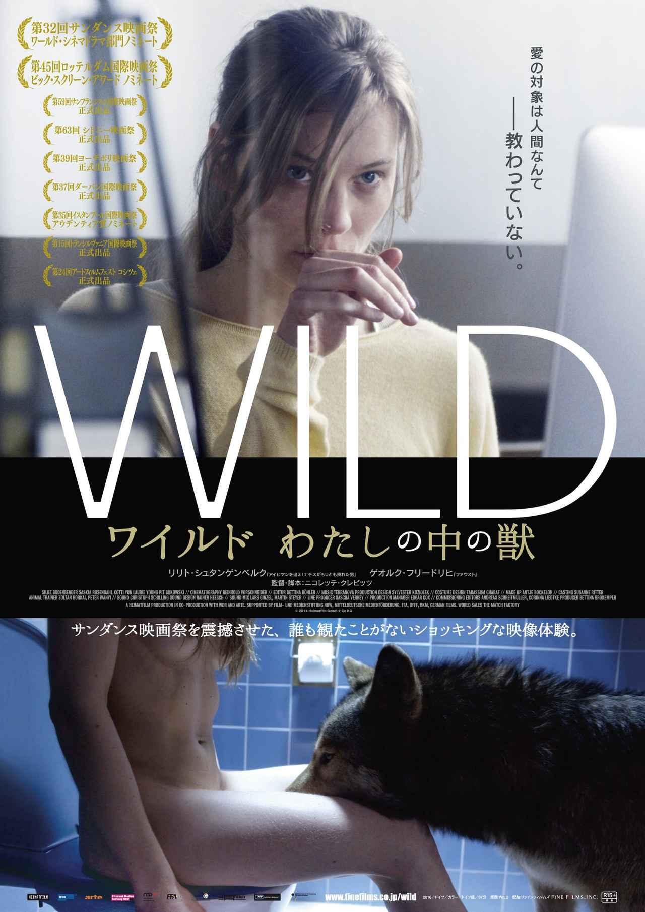 画像: https://twitter.com/WildFinefilms?lang=ja