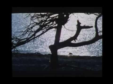 画像: '' the sacrifice (offret) '' - official film trailer - 1986. youtu.be