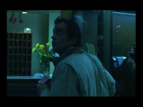画像: A Dog's Dream - Official Trailer youtu.be