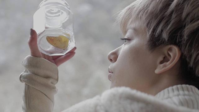 画像: 短編映画『冬の蝶』予告|ユーロスペース公開 youtu.be