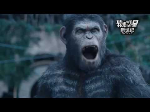 画像: 『猿の惑星:新世紀(ライジング)』2014.12.24レンタル配信/2015.2.4ブルーレイ&DVDリリース youtu.be