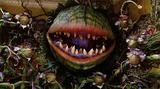 画像: https://www.yahoo.com/movies/little-shop-horrors-remake-works-greg-berlanti-directing-210832440.html