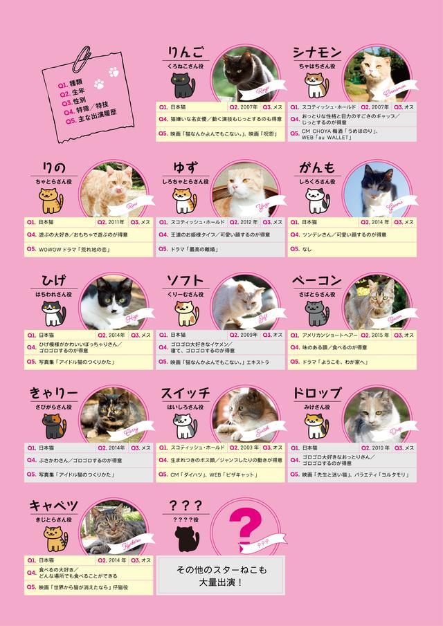 画像2: 主演 伊藤淳史&ヒロイン 忽那汐里もゾッコン!ネコ好きにはたまらない−12匹の猫界のスタープレイヤーを発表!映画『ねこあつめの家』