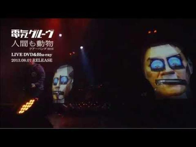 画像: 電気グルーヴ 「Shame」 from 『人間も動物 ツアーパンダ2013』 youtu.be