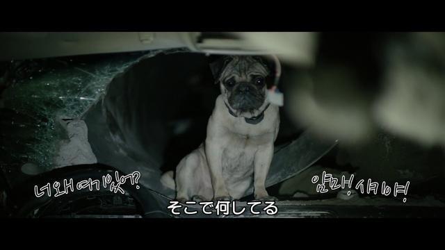 画像: 韓国で700万人が見た究極のサバイバル映画『トンネル 闇に鎖された男』 youtu.be