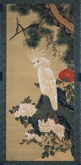 画像: 鸚鵡牡丹図