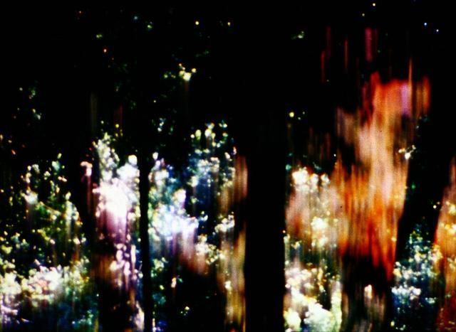 画像: 統辞の木、範列の葉   斎藤大地
