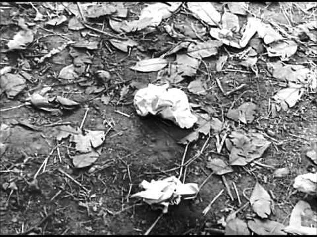 画像: Charulata (1964) Scene youtu.be