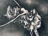 画像: 雪村周継《《龍虎図屏風》部分 根津美術館蔵  ちょっとおとぼけな表情の龍。 photo©cinefil