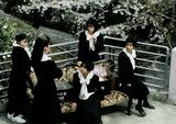 画像: 『櫻の園』 監督:中原俊/1990年/カラー/35mm/96分/ 出演:中島ひろ子、つみきみほ、白島靖代