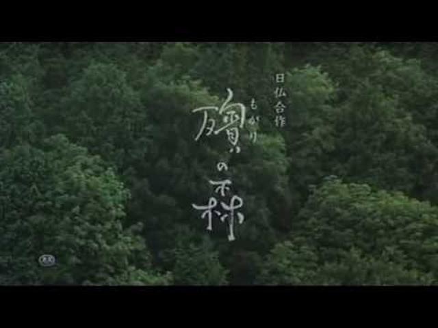 画像: 殯の森 youtu.be
