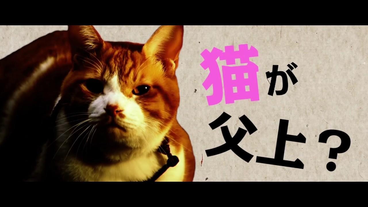 画像: 5月20日全国公開!映画『猫忍』予告編 youtu.be