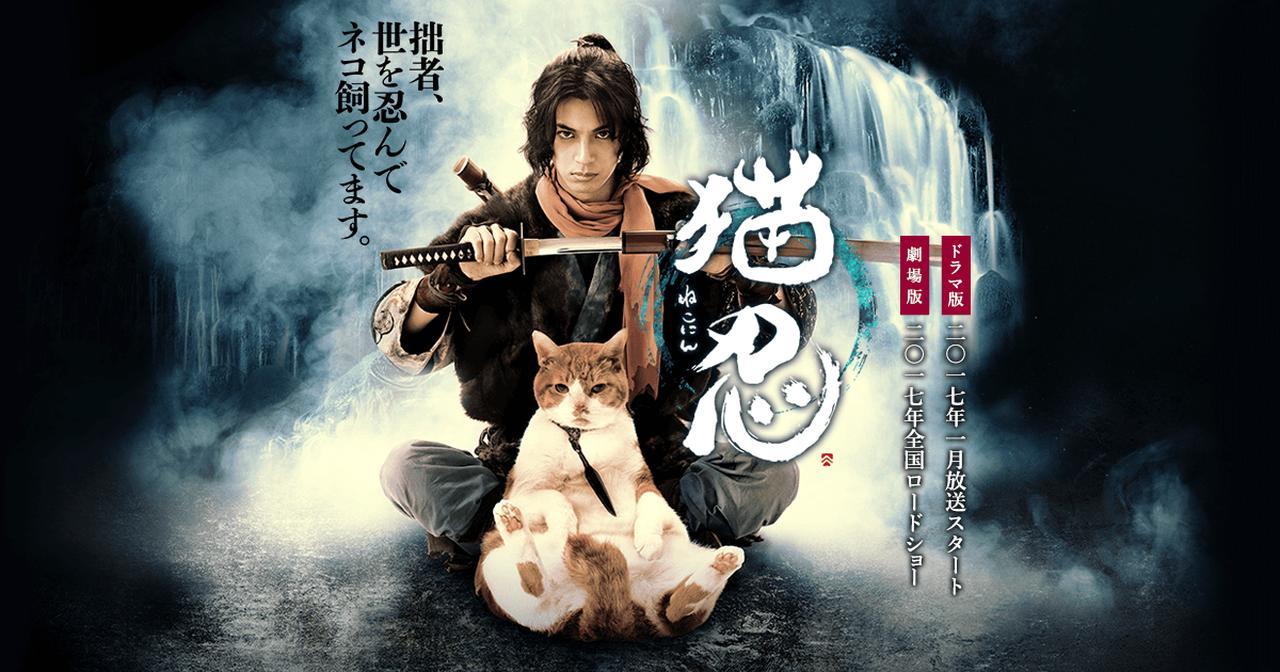 画像: 劇場版『猫忍』公式サイト