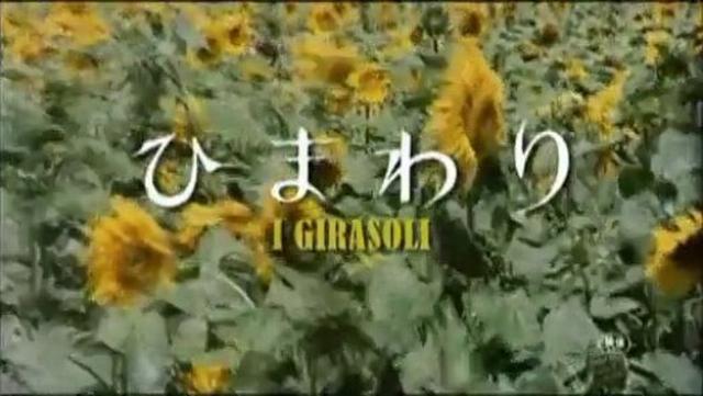 画像1: 映画 ひまわり 予告編 - Dailymotion動画 dai.ly