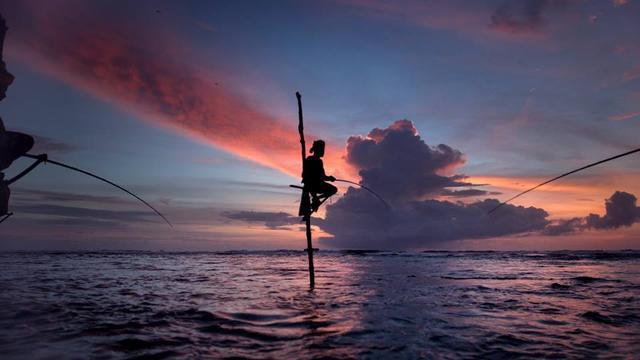 画像: 撮影地 スリランカ www.facebook.com